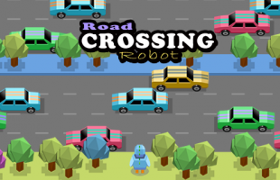 Road Crossing Robot